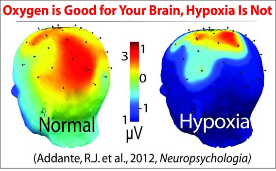 Effects of Hypoxia on Brain using fMRI.