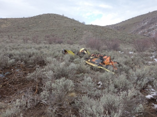 NTSB Accident WPR13FA041 American Aviation AA-1 attempted takeoff with frost on aircraft